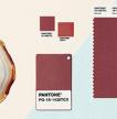 Pantone Color of the Year 2015: Marasla