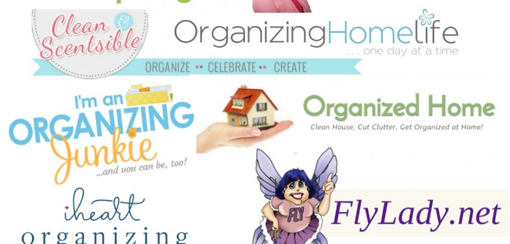 Top Home Organizing Blogger