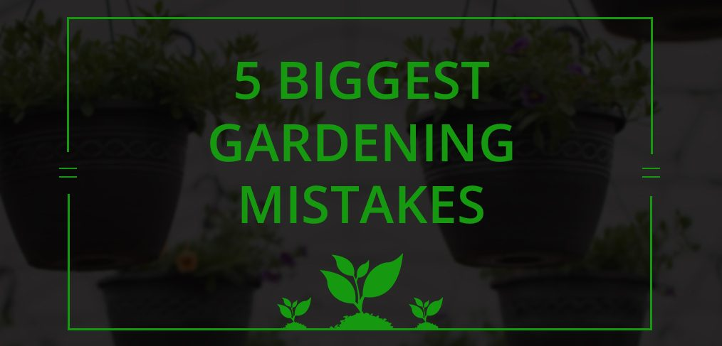 Biggest Gardening Mistakes